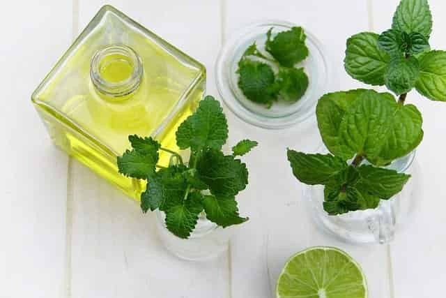 Peppermint essential oil for neuropathy
